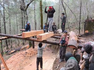 Cold weather and rains did not stop our team from cutting wood for the project.